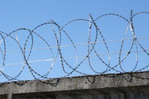 Спираль Гюрза 500/3 на заборе из бетонных плит