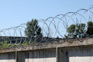 Спираль Гюрза 500/5 на заборе из бетонных плит